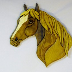 horsehead11